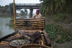 """Ranjeet feeds his otters after a night's work. """"It's not possible to support a family with this profession anymore"""", says Ranjeet, who has fished with otters for over 30 years. As rivers dry up and the fish population decreases, Ranjeet and his team barely make a living."""
