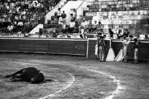 A 'lidia' bull lays dead waiting to be dragged out of the ring, while the triumphant matadores chat.