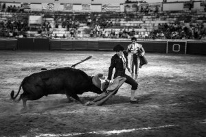 'SANGRE & ARENA' — A matador and his bull. Bullfighting has survived and evolved since its beginnings in Spain in the XII century. However, with the growing restlessness amongst public opinion over animal rights, this tradition and this particular breed of cattle – Lidia Bulls – is under threat.