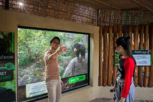A Cambodian visitor takes a 'selfie' in front of one of the bear enclosures at Phnom Tamao Wildlife Rescue Center.